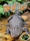 Reptiles - eBook