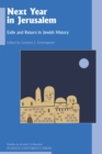 Next Year in Jerusalem : Exile and Return in Jewish History - eBook