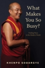 What Makes You So Busy? : Finding Peace in the Modern World - eBook