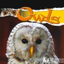 Owls - eBook