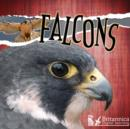 Falcons - eBook