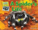 A Spider's Life - eBook