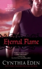 Eternal Flame - eBook