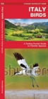Italy Birds : A Folding Pocket Guide to Familiar Species - Book