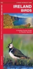 Ireland Birds : A Folding Pocket Guide to Familiar Species - Book