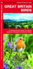 Great Britain Birds, 2nd Edition : A Folding Pocket Guide to Familiar Species of England, Scotland & Wales - Book