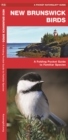 New Brunswick Birds : A Folding Pocket Guide to Familiar Species - Book