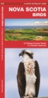 Nova Scotia Birds : A Folding Pocket Guide to Familiar Species - Book
