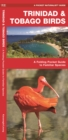 Trinidad & Tobago Birds : A Folding Pocket Guide to Familiar Species - Book