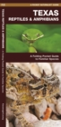Texas Reptiles & Amphibians : A Folding Pocket Guide to Familiar Species - Book