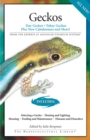 Geckos : Day Geckos, Tokay Geckos Plus New Caledonians and More! - eBook