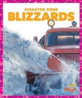 Blizzards - Book