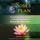 Your Soul's Plan : Discovering the Real Meaning of the Life You Planned Before You Were Born - eAudiobook