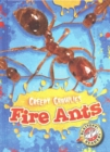 Fire Ants - Book