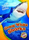 Great White Sharks - Book
