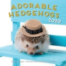 Adorable Hedgehogs 2020 : 16-Month Calendar - September 2019 through December 2020 - Book