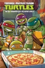 Teenage Mutant Ninja Turtles New Animated Adventures Omnibus Volume 2 - Book