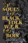 The Souls Of Black Folk - Book