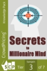 The Secrets to a Millionaire Mind - eBook