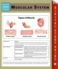 Muscular System (Speedy Study Guides) - eBook