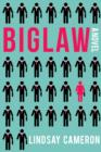 Biglaw : A Novel - Book