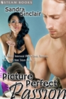 Picture Perfect Passion - A Sexy Interracial BWWM Erotic Story from Steam Books - eBook