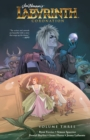 Jim Henson's Labyrinth: Coronation Vol. 3 - eBook