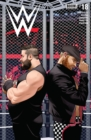 WWE #18 - eBook