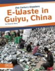 21st Century Disasters: E-Waste in Guiyu, China - Book