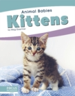 Animal Babies: Kittens - Book