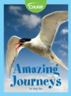 Amazing Journeys - eBook