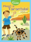 Meet a Tarantula! - eBook