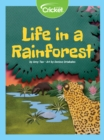 Life in a Rainforest - eBook