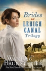Brides of Lehigh Canal Trilogy - eBook