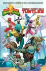 Mighty Morphin Power Rangers/Teenage Mutant Ninja Turtles - eBook