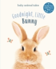 Goodnight, Little Bunny - eBook