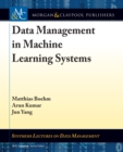 Data Management in Machine Learning Systems - eBook