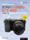 David Busch's Sony Alpha a6100/ILCE-6100 Guide to Digital Photography - eBook
