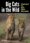 Big Cats in The Wild : A Visual Essay of Lions, Jaguars, Leopards, Pumas, and More - eBook