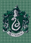 Harry Potter: Slytherin Embellished Card - Book