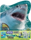 Animal Adventures: Sharks - Book