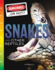 Snakes and Other Reptiles - eBook