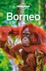 Lonely Planet Borneo - eBook