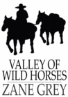 Valley of Wild Horses - eBook