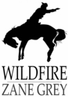 Wildfire - eBook
