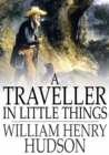 A Traveller in Little Things - eBook