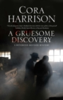 Gruesome Discovery, A : A mystery set in 1920s Ireland - eBook