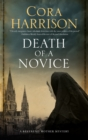 Death of a Novice : A mystery set in 1920s Ireland - eBook