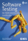 Software Testing : An ISEB Intermediate Certificate - eBook