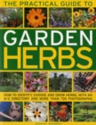 Practical Guide to Garden Herbs - Book